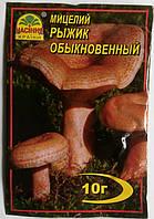 Мицелий Рыжик Обыкновенный   10гр