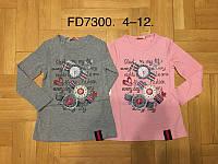 Реглан детский  для девочек F&D 4-12 лет оптом