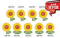 Стенди для НУШ - склад числа соняшники