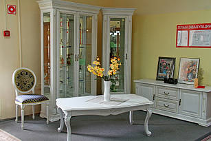 Комплект в вітальню (стенка в гостиную) Вітовт білий Слониммебель 2