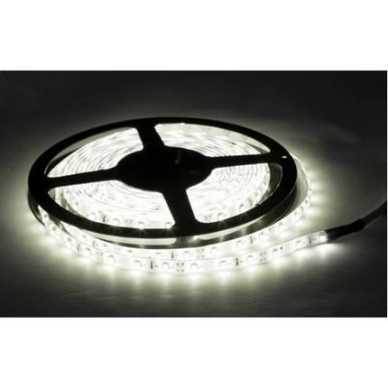 "LED стрічка ""NIL"" 35x28 60Led/m (4,8W/m) біла IP20 smd 2835 2T 60д.м , фото 2"
