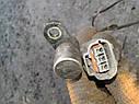 Датчик положения (оборотов) коленвала Mazda 626 GF 323 BJ Premacy 2.0 DITD, фото 4