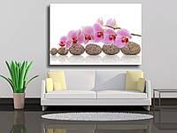 "Картина на холсте ""СПА-композиция из камней с орхидеей"""