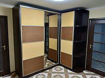 Шкафы-купе наши работы