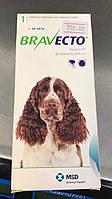 Bravecto таблетка от блох для собак 10-20кг