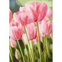"""Картина по номерам """"Весенние тюльпаны"""" 35х50см, Без Коробки"""