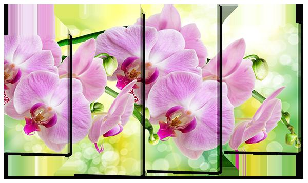 Модульная картина Interno Эко кожа Ветви розовой орхидеи 126x77см (A793L)
