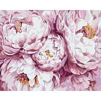 Раскраска антистресс по номерам Нежно-розовые пионы 40 х 50 см, Без Коробки , фото 1