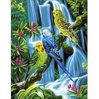 """Картины по номерам своими руками """"Волнистые попугайчики"""" 30х40см, С Коробкой"""