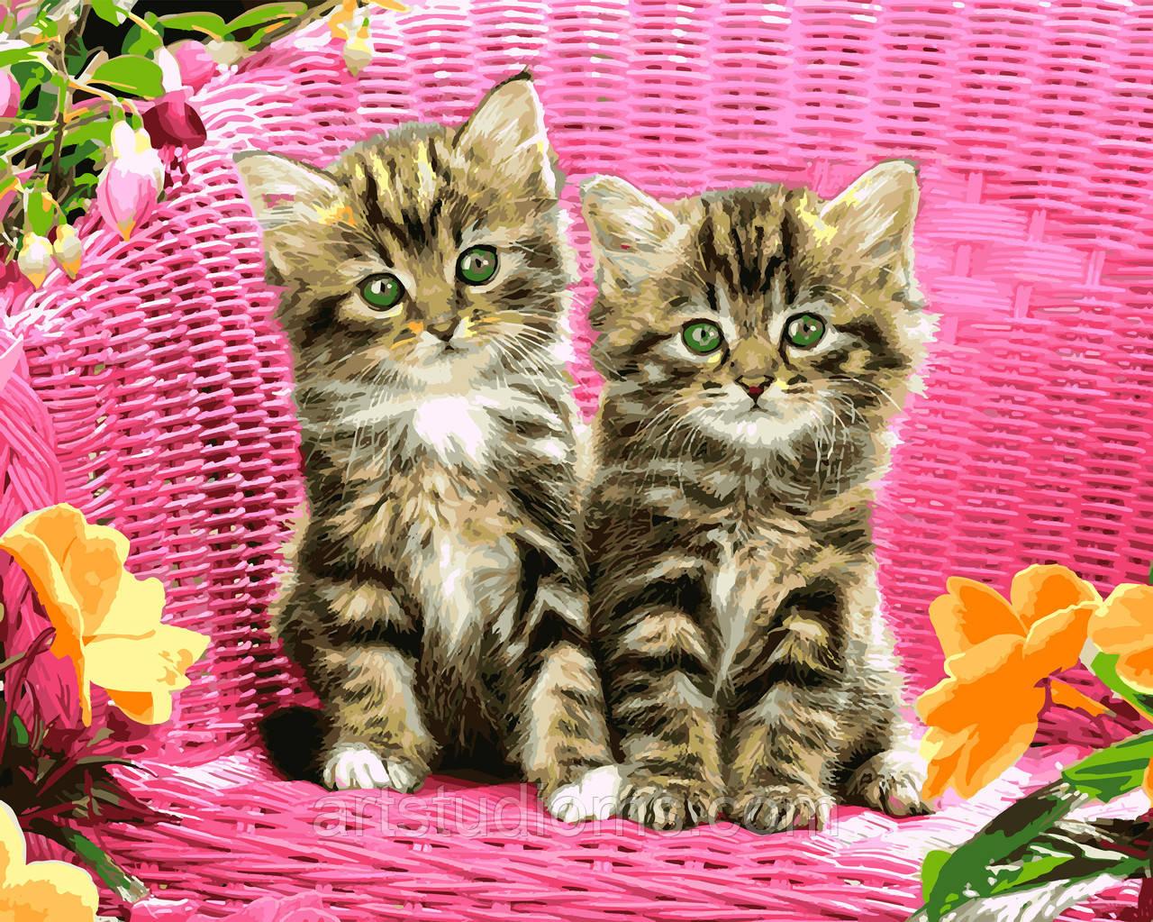 раскраска антистресс для взрослых и детей зеленоглазые котята 40 х 50 см с