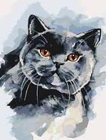DIY Раскраски на холсте Британский котейка 30х40см, Без Коробки
