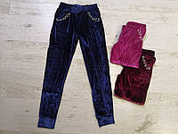 Велюровые спортивные брюки для девочек оптом, Seagull, 134-164 рр., фото 1