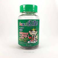 Gummi King Echinacea Plus Vitamin C and Zinc For Kids 60 Gummies (Гамми Кинг Эхинацея плюс Витамин С и Цинк для детей жевательные таблетки 60)