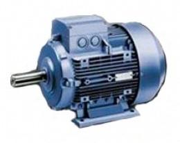 Низковольтные стандартные двигатели Siemens 1MJ6