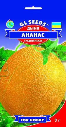 Дыня Ананас, пакет 3 г - Семена дыни, фото 2