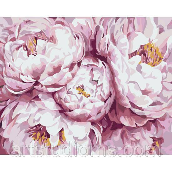 Раскраска антистресс по номерам Нежно-розовые пионы 40 х 50 см, С Коробкой
