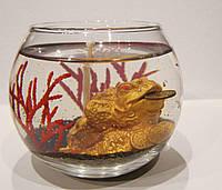 Гелевая свеча Денежная лягушка