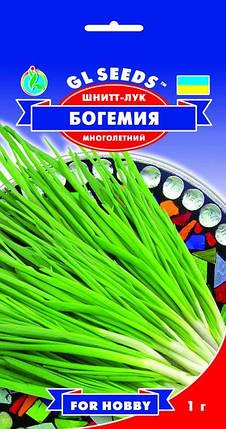 Лук Шнитт Богемия, пакет 1 г - Семена лука, фото 2