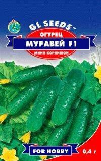 Огурец Муравей F1, пакет 0.5 г - Семена огурцов, фото 2