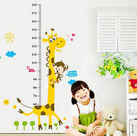 Детский ростометр (4860)