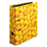 Папка-регистратор Herlitz А4 8см World of Fruit Lemon  (10546901)