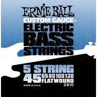 Струны ERNIE BALL P02810