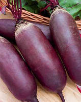 Семена свеклы Атаман 0,5 кг. Коуел