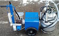 Доильный аппарат АИД-1Р масляный, фото 1