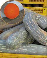Семена тыквы Лунга Пиэна ди Наполи 5 кг. Коуел