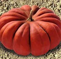 Семена тыквы Мускат де Прованс 5 кг. Коуел