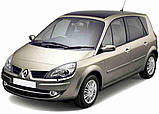 Автоковрики Renault Grand Scenic 2003-2009 Stingray, фото 10