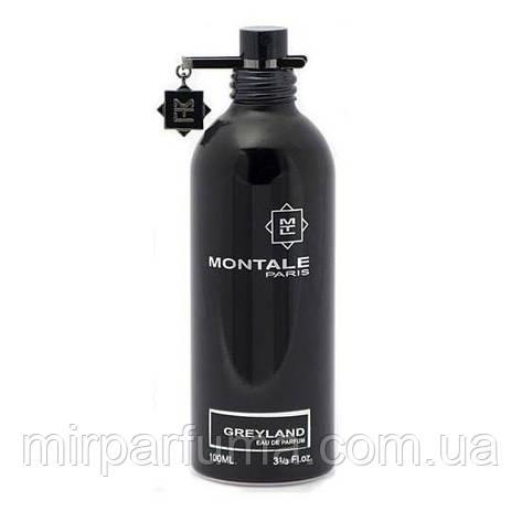 Montale Greyland 100 ml, фото 2