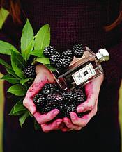 Одеколон Jo Malone Blackberry & Bay