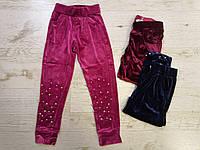 Спортивные велюровые штаны для девочек оптом, Seagull, 116-146 см,  № CSQ-52124