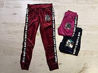 Спортивные велюровые штаны для девочек оптом, Seagull, 134-164 см,  № CSQ-52121, фото 1