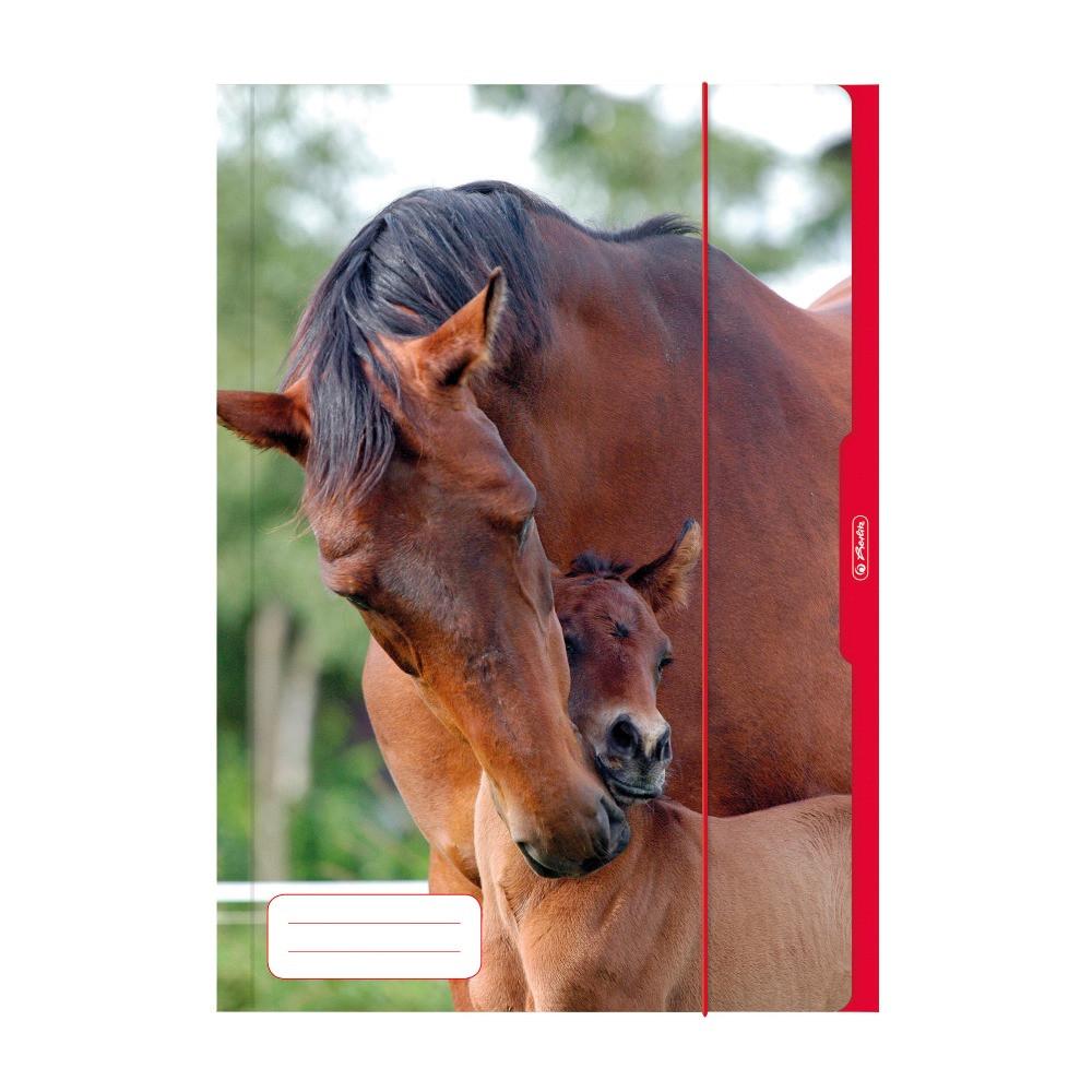 Папка картонная на резинке Herlitz А3 Horse (10285690)