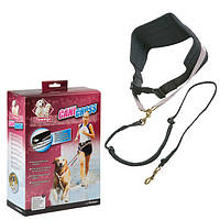 Пояс с поводком Karlie-Flamingo Canicross для бега и дрессировки собак, 140 см