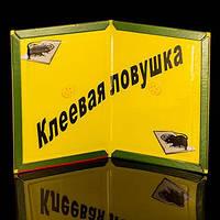 Клеевая ловушка для мышей Catch Expert поможет избавиться от грызунов, с доставкой по Украине, фото 1