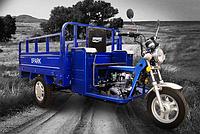 Квадроцикл грузовой SPARKSP125TR-2(124см.куб.,электростартер, синий)