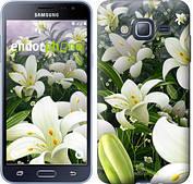 "Чехол на Samsung Galaxy J3 Duos (2016) J320H Белые лилии ""2686c-265-2911"""