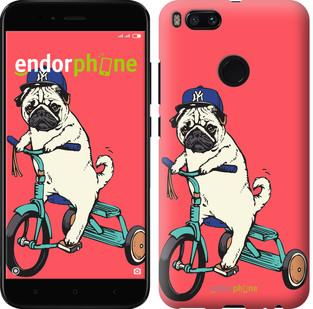 "Чехол на Xiaomi Mi A1 Мопс на велосипеде ""3072c-1132-2911"""