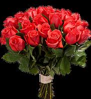 Алая роза поштучно Star 2000 (Стар 2000), фото 1