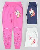 Спортивные брюки для девочек Seagull оптом, 116-146 pp.