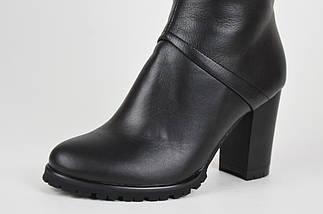 Кожаные сапоги на каблуке Venison Жардин, фото 3