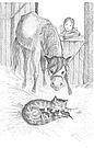 Загублена в снігах, або Пухнасточка.  Книга Голлі Вебб, фото 8