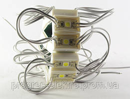 Светодиодный модуль 5050 1LED 0.24W IP65 LR100