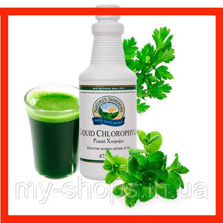 Хлорофилл жидкий (хлорофил) НСП. Жидкий Хлорофилл NSP. Liquid Chlorophyll НСП. Натуральные БИОДОБАВКА
