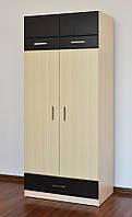 Детская Макс Шкаф 2-х дверный 2-х секционный
