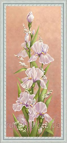 Картина YS-Art CA175-5 33x70 (белая рамка)