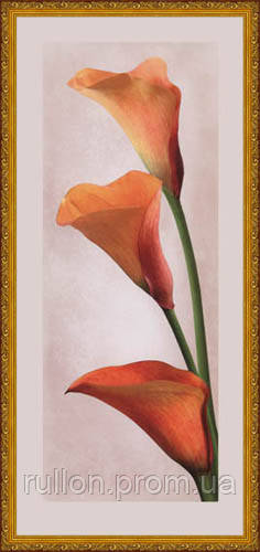 Картина YS-Art CA178-6 33x70 (белая рамка)